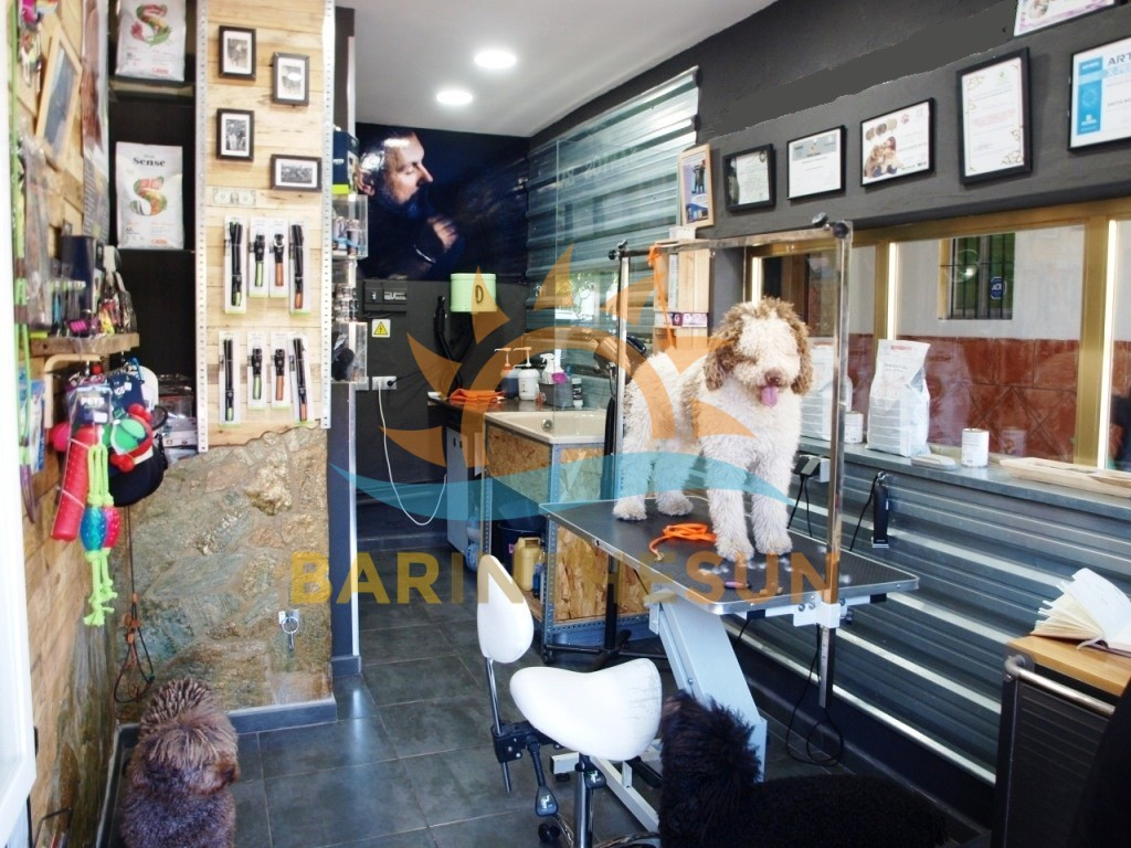 Fuengirola Dog Grooming Business For Sale, Buy a Business in Spain